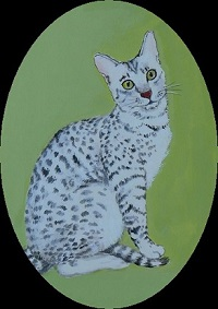 A Portrait of Gib as an adult cat, in the style of an Elizabethan miniature.