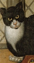 A black and white cat, staring directly at the portrait painter. This is the cat that appears in the Tower Portrait with the Earl of Southampton.