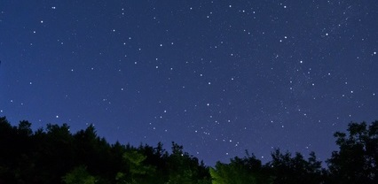 Starry sky over the wood during a summer evening.