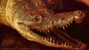 The head of a crocodile.