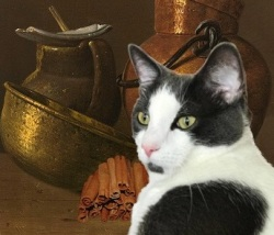 A black and white cat posed against a wooden bench with copper, brass and eathernware vessels and a pile of cinnamon quills.
