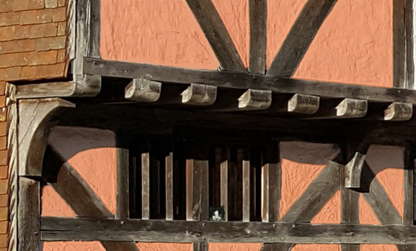 A black and white cat peering through an unglazed window in a timbered Elizabeth house.