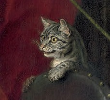 A grey tabby cat, peering eagerly over the back of a chair.